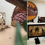 décoration ethnique agence Elstarecon