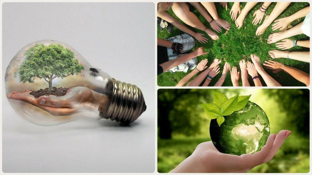 respect environnement